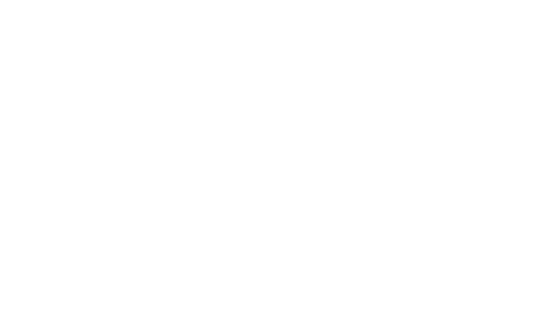 transperent logo